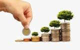 Ví dụ về kế hoạch quản lý tài chính
